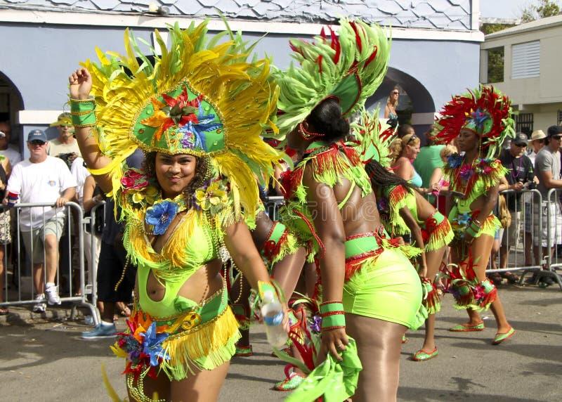Couleurs de carnaval images libres de droits