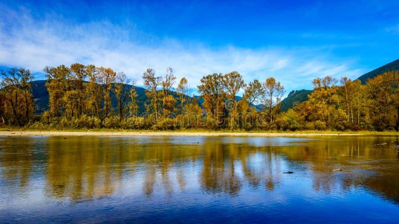 Couleurs de chute autour de Nicomen Slough, une branche de Fraser River, comme il traverse Fraser Valley photos libres de droits