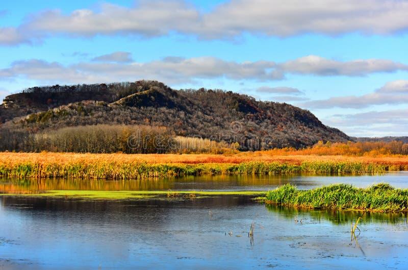 Couleurs de chute dans le refuge supérieur Marsh Area - nouvel Albin, Iowa du Mississippi photo libre de droits