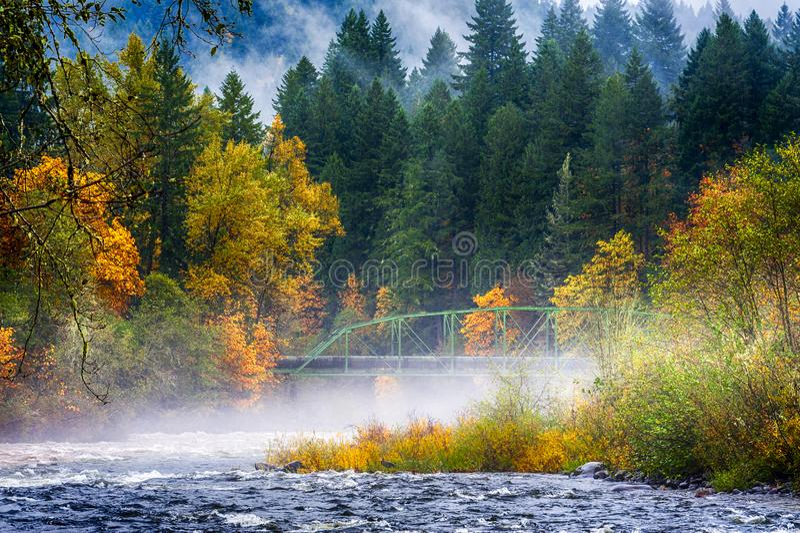 Couleurs de chute le long du confluent de deux rivières photo stock
