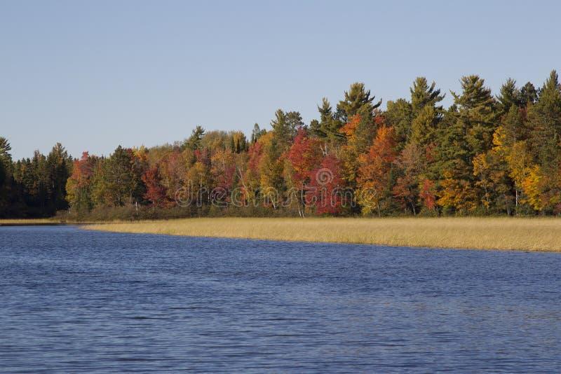 Couleurs de chute sur la rivière Wisconsin photo stock