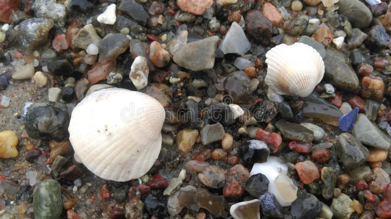 Couleurs de la plage baltique photos stock