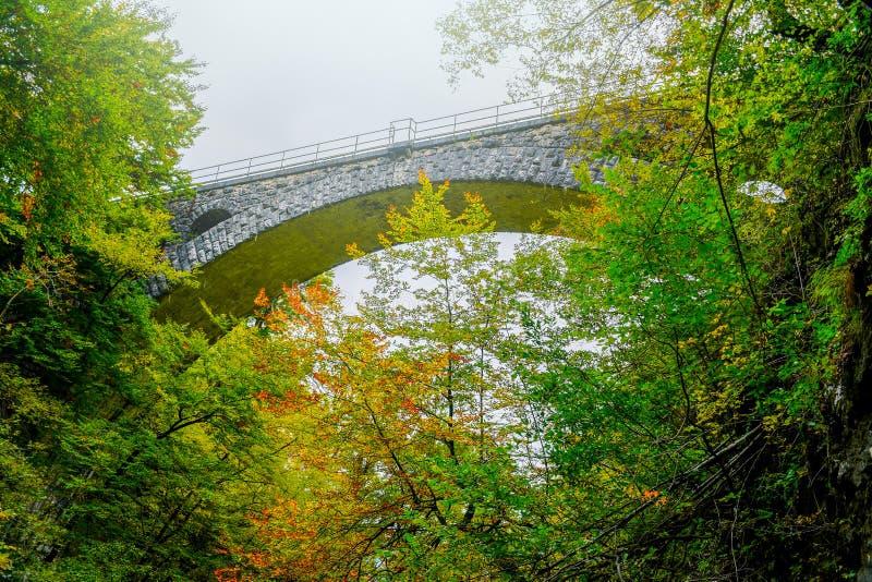 Couleurs de for?t d'automne avec le vieux pont rocheux en train en parc naturel de Vintgar photographie stock libre de droits
