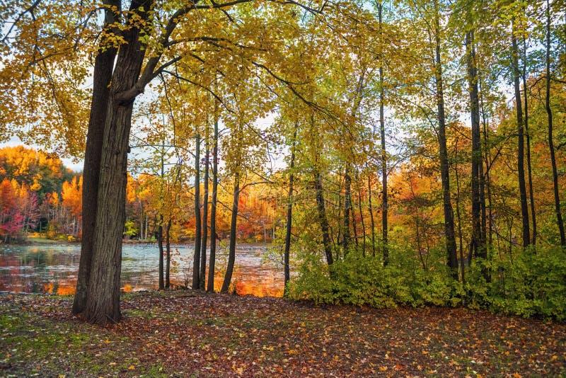 Couleurs de terre de lac photo libre de droits