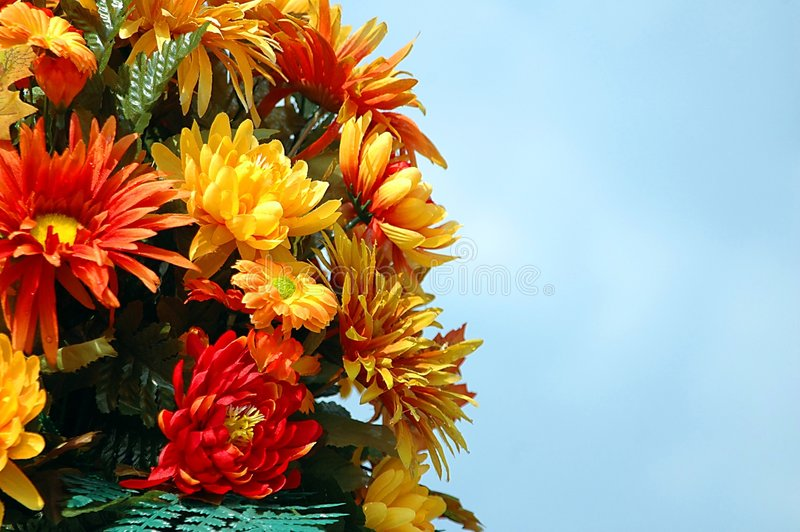 Couleurs des fleurs d'automne photo libre de droits