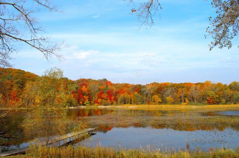 Couleurs solitaires d'automnes du ` s de lac, Minnesota images libres de droits