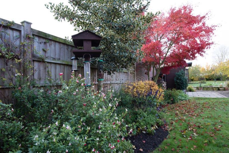 Couleurs tôt d'automne dans le jardin photographie stock libre de droits