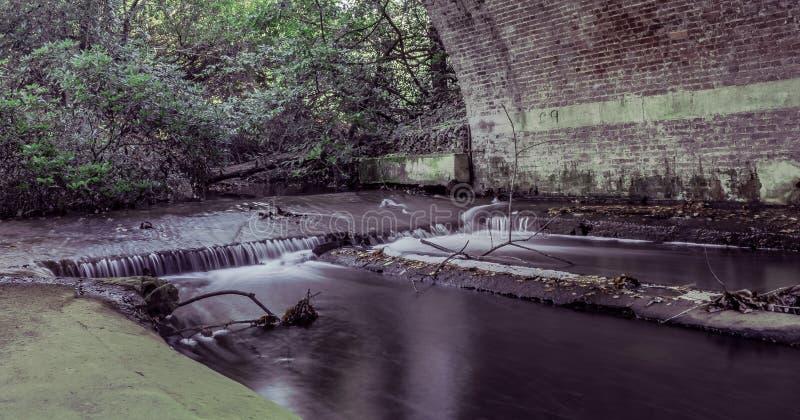 Coulez sous la jeune mariée en Virginia Water, Surrey, Royaume-Uni photographie stock