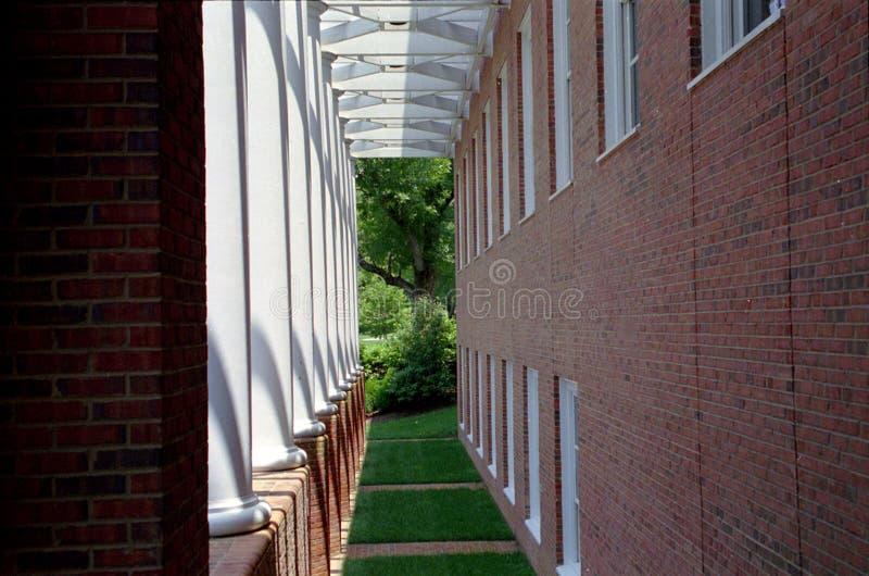 Couloir d'herbe photographie stock libre de droits