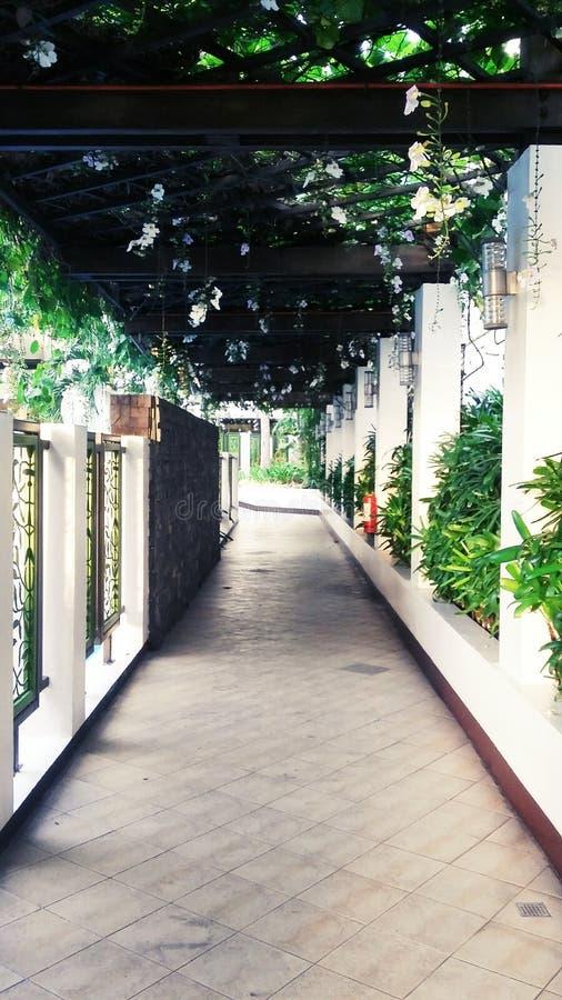 Couloir de jardin photographie stock