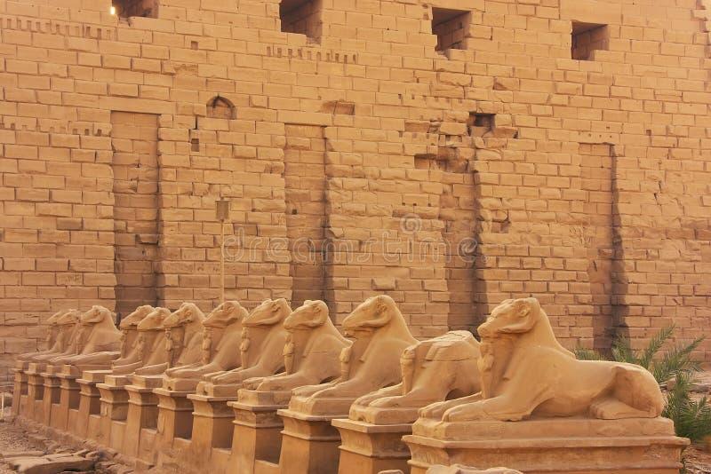 Couloir de Sphynxes, complexe de temple de Karnak, Louxor image libre de droits