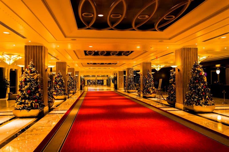 Couloir des arbres de Noël dans Gaylord National Resort, Natio photo stock