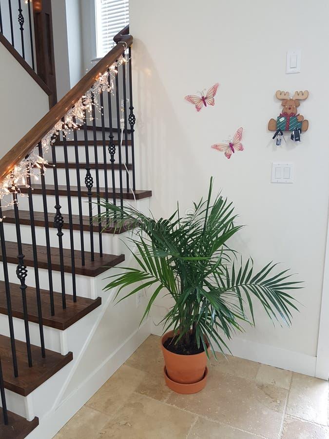 Couloir et escaliers d'entrée photos libres de droits