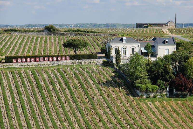 Couly Dutheil winnica Chinon Francja zdjęcia royalty free