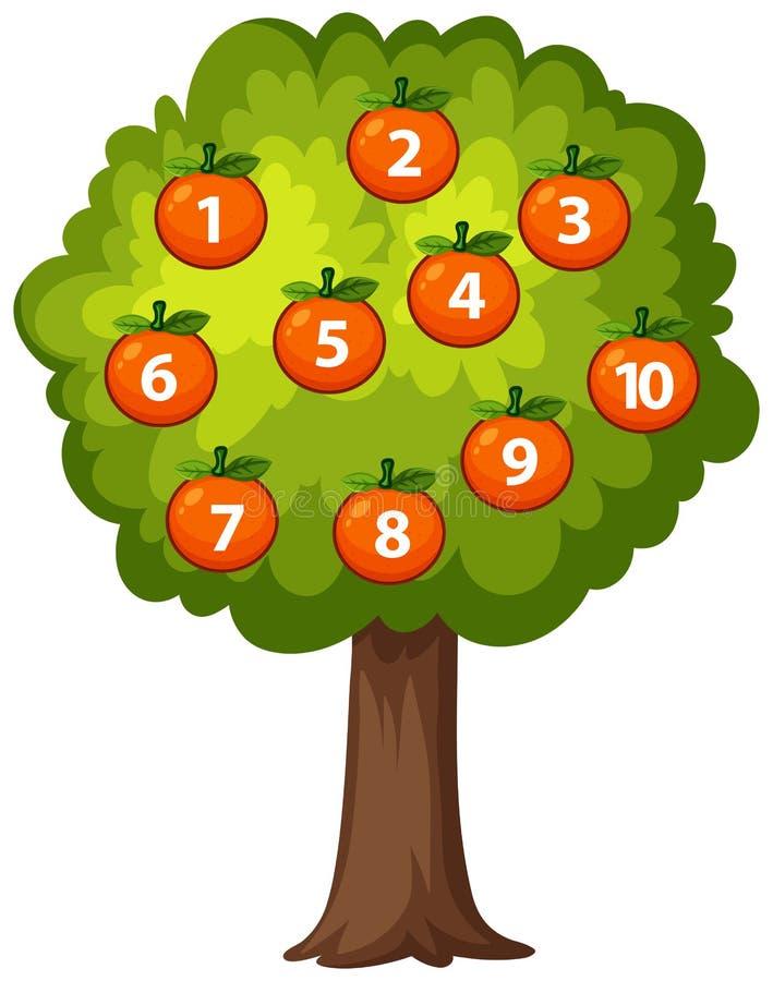 Count orange on the tree stock illustration