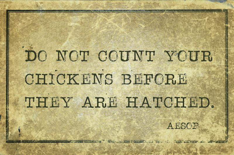 Count your chickens Aesop. Do not count your chickens before they are hatched - famous ancient Greek story teller Aesop quote printed on grunge vintage cardboard vector illustration