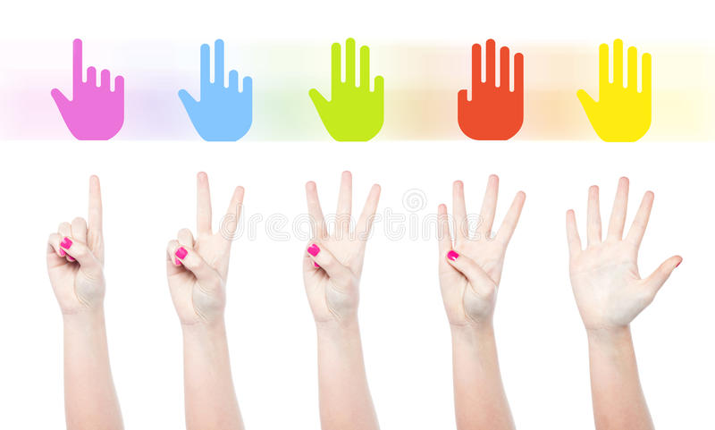 Counting Female Hands Stock Illustration