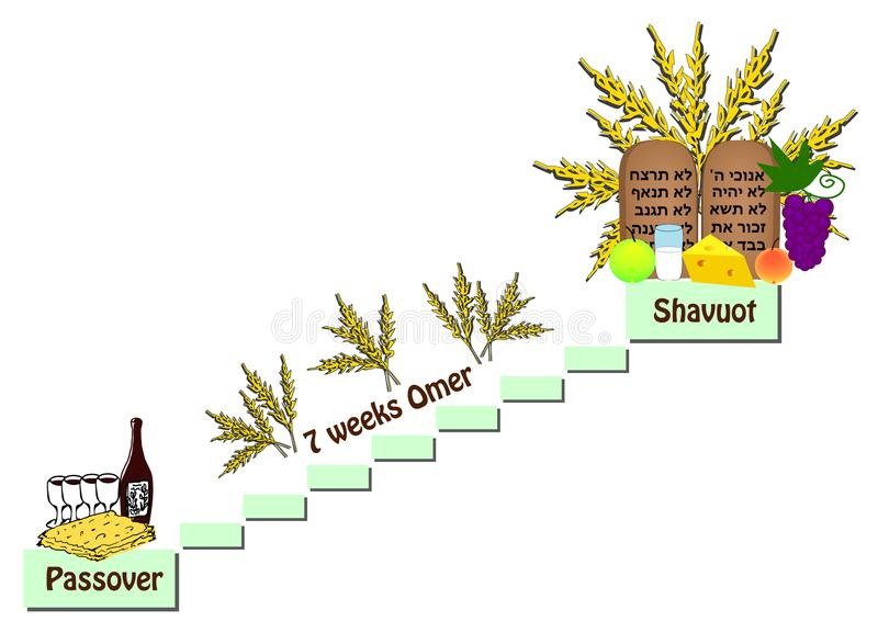 Counting Omer between Passover and the Shavuot. Wine, matzo, fruit, milk, cheese. Scrolls Torah, Tablets Bible, Ten Commandments stock illustration