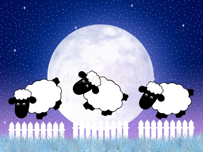 Counting sheep vector illustration