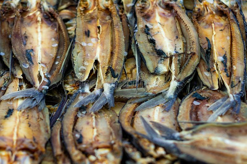 Countless silver-colored fish dried out in salt. Fresh marine food royalty free stock photos