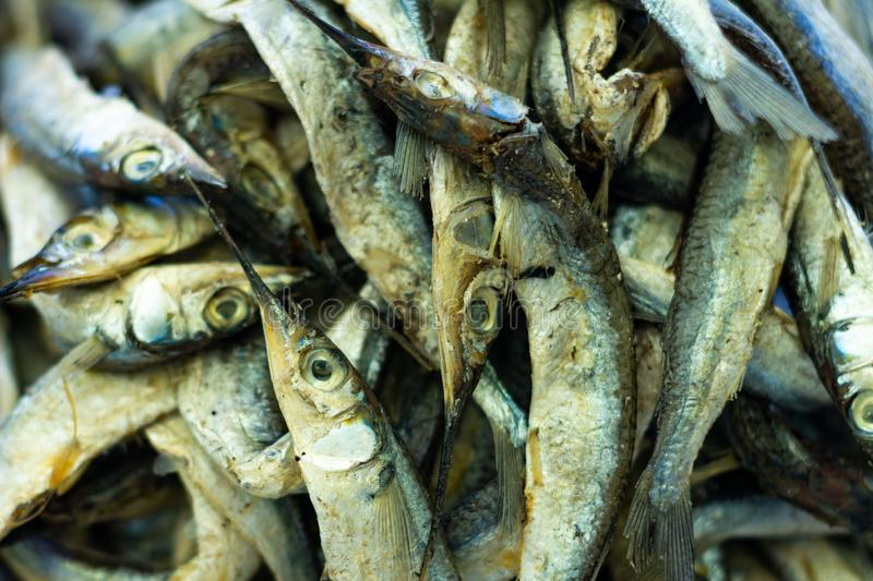 Countless small silver fish. Proteins of animal origin royalty free stock photo