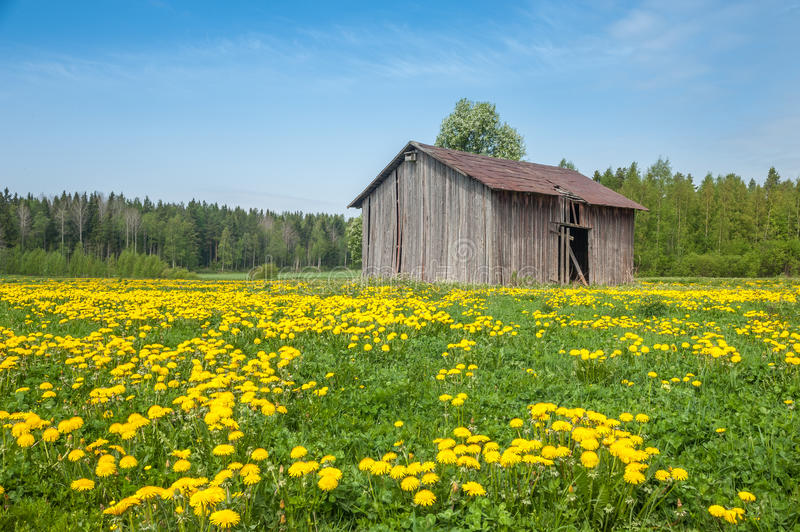 Country Barn royalty free stock photography