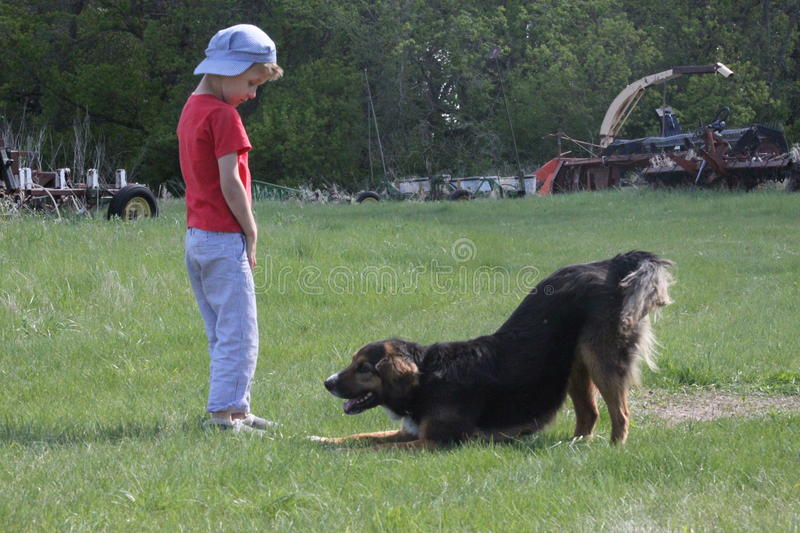 Country boy plays with farm dog royalty free stock image
