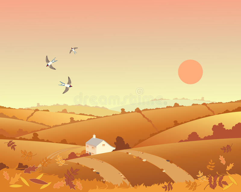 Country cottage in autumn. An illustration of a country cottage in an autumn landscape with rolling hills hedgerows and leaves under a sunset sky vector illustration