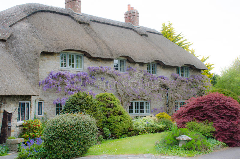 Country cottage with wisteria royalty free stock photo
