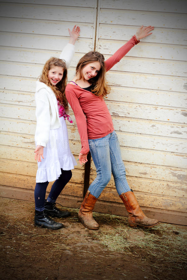 Country Dancers royalty free stock images