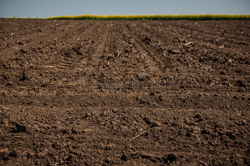 Unworked land, field. Dirt texture. Country dirt field texture. royalty free stock photo