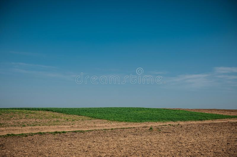 Unworked field with wheel tracks in spring near wheat land. Dirt texture with blue sky. Country dirt field texture. stock photo