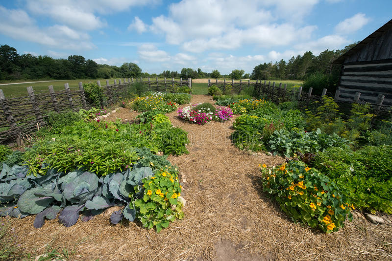 Download Country Farm Vegetable Garden Food Stock Photo