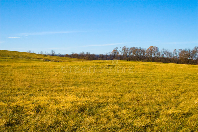 Country Farm in Virginia