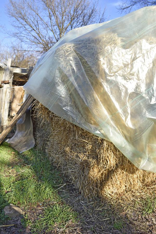 Country feed hay on farm royalty free stock photo