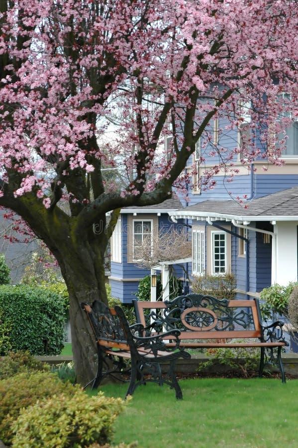 Country Home stock photos