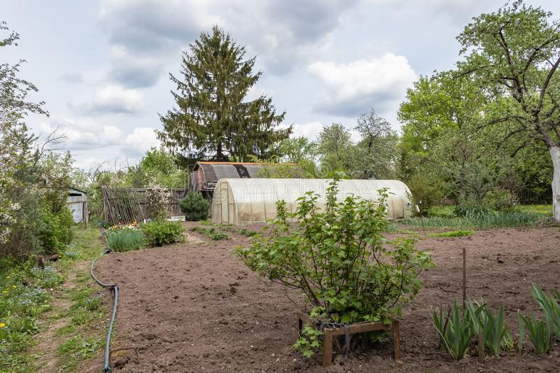 Country house, greenhouse with cultivated land surrounded by greenery in the spring in Russia. Russian dacha. Country house with cultivated land surrounded by stock photography