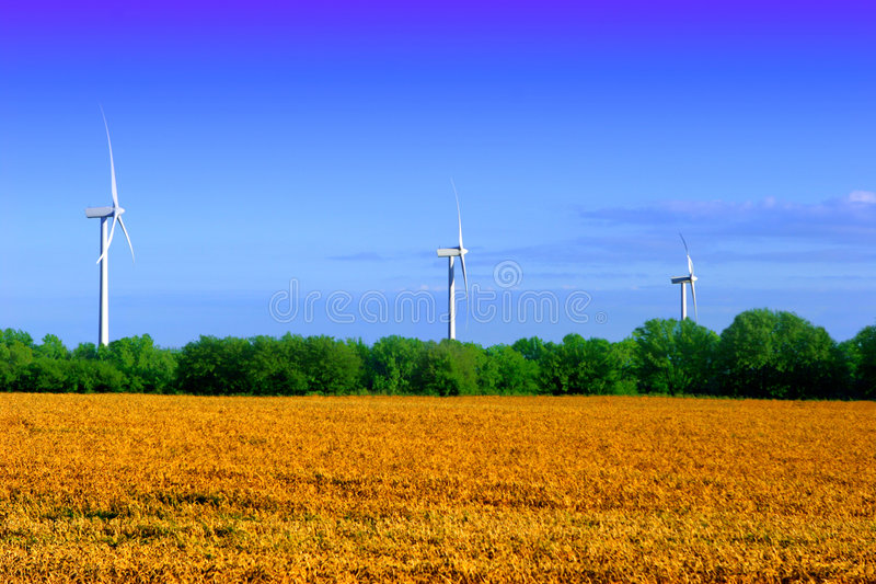 Country landscape. With wind farm and field of wheat royalty free stock photography
