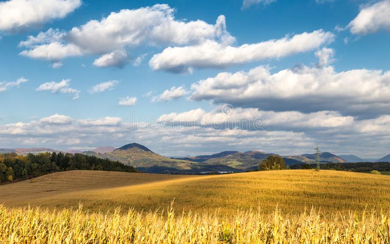Country landscape with dried corn field on a sunny day. royalty free stock photography