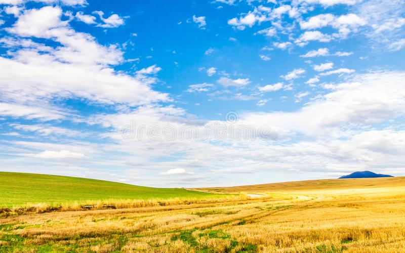 Country landscape with fields. stock images