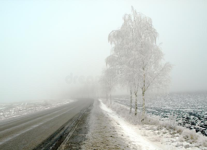 Download Country Landscape In Frost And Fog Stock Photo - Image of country, scenic: 8614284