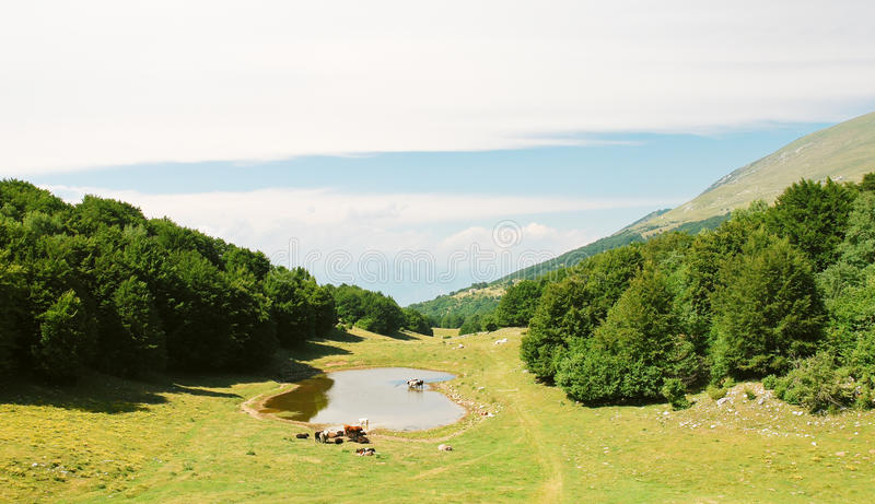 Country landscape in Monte Baldo mountains. In summer day, Lake garda region, Alps, Italy royalty free stock photography