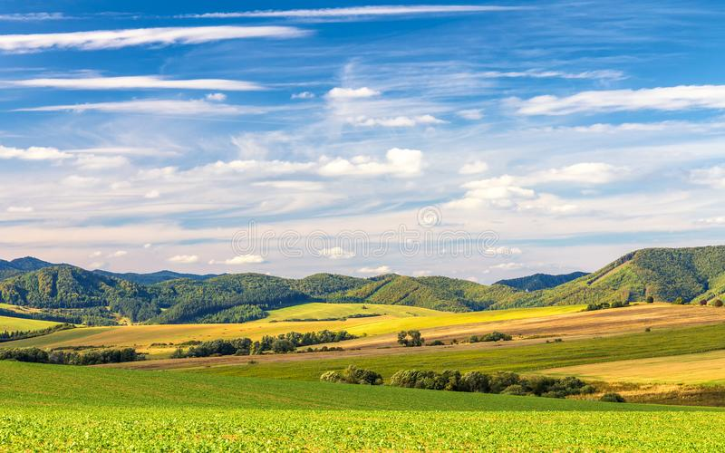 Country landscape. royalty free stock photography