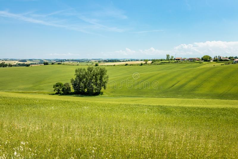 Country landscape in `Occitanie`, south of Toulouse, France. Blue sky and green meadow royalty free stock image