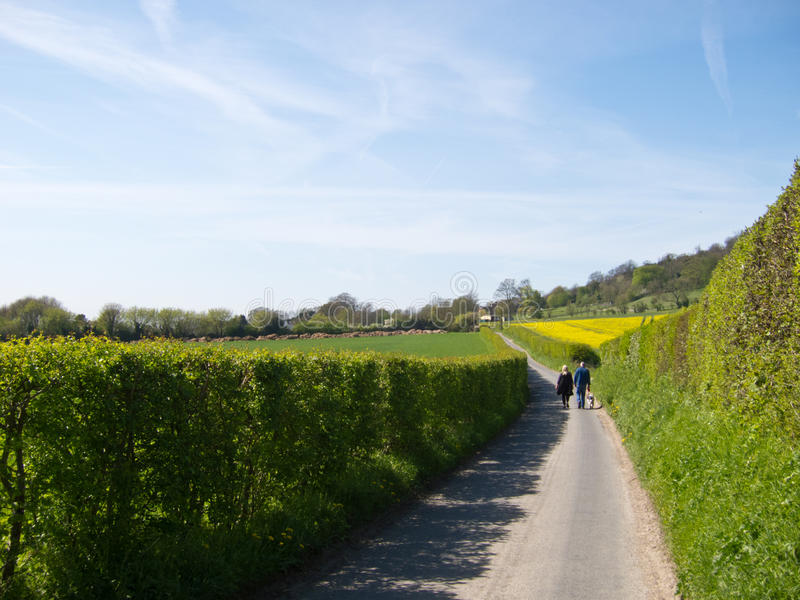 Download Country Lane stock image. Image of couple, green, lanes - 23193773