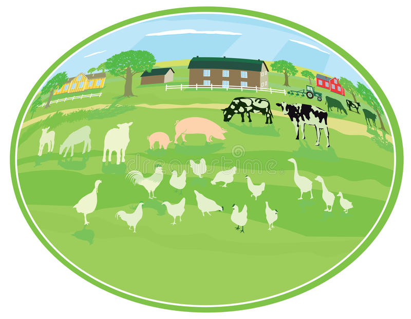Country life with animals stock illustration