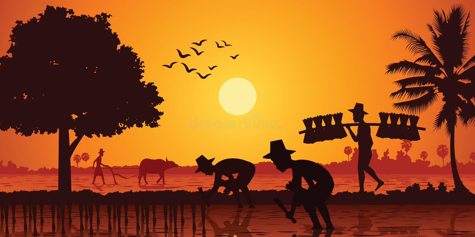 Country life of Asia farmer plant rice while a man carry rice seedling and another plow field by buffalo on sunrise time, stock illustration