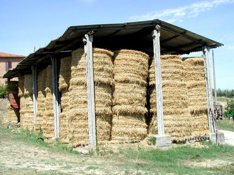Hay yellow bales. Country life scene, the hay. The image is featuring yellow bales stock photography