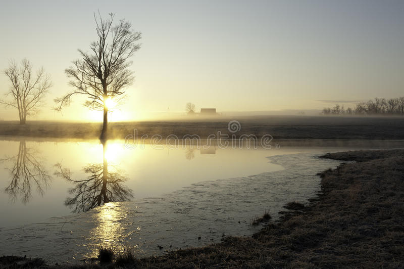 Download Country morning mist stock image. Image of scenic, farmland - 25249893