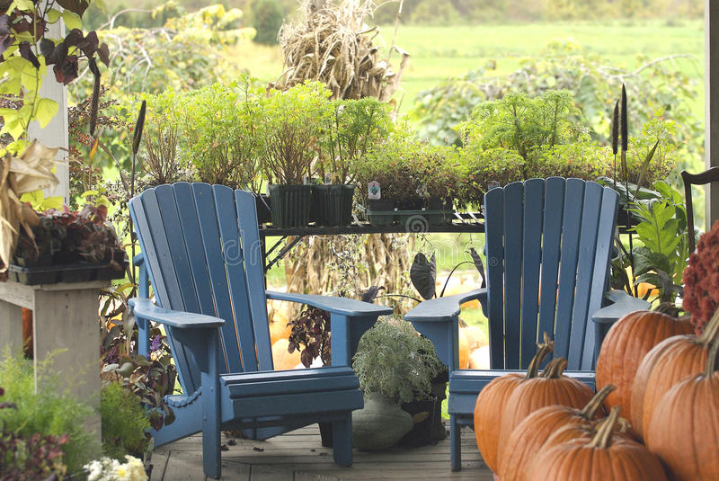 Country porch with blue chairs and pumpkins stock images